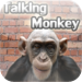 ** Angry Talking Monkey **